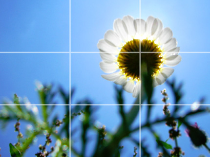 flower rule of thirds